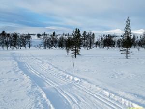 Norska spåren körda, men igendrivna
