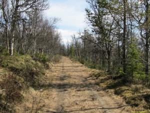 Tog även gamla Norgevägen tillbaka