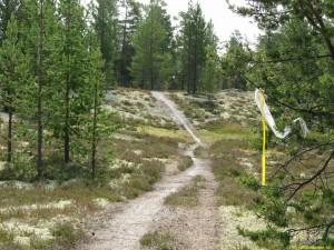Lättåkt stig