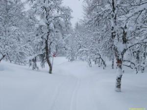 På väg söderut mot Norgevägen
