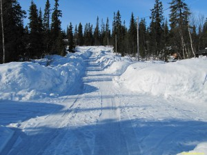 Så här ser vägen ut på Ollarsliden