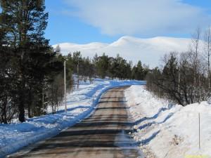 Vägen ned mot Sjöstugan