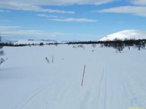 Mot Valdalen från Bergset