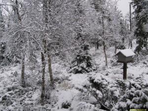 Ska snön bli liggande nu?