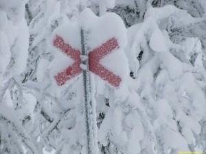 Mycket snö/rim