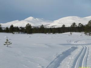 Mot Valdalen